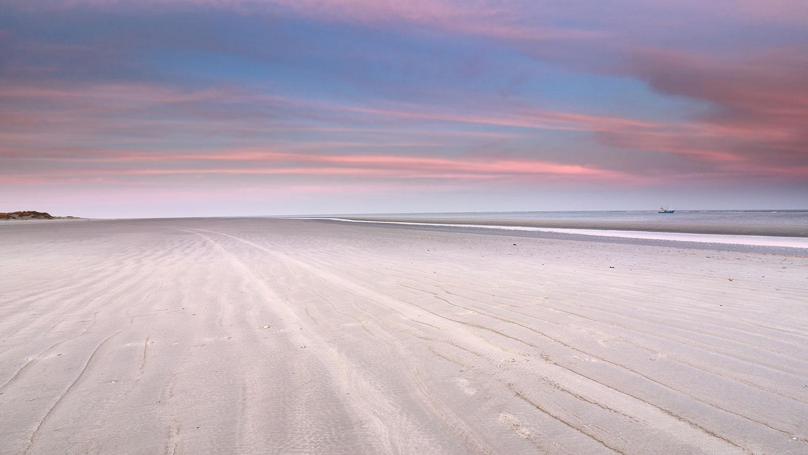 praia1 - A Lei e o Amor